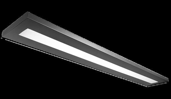 LEVEL25 I LED DDP 4K D AM