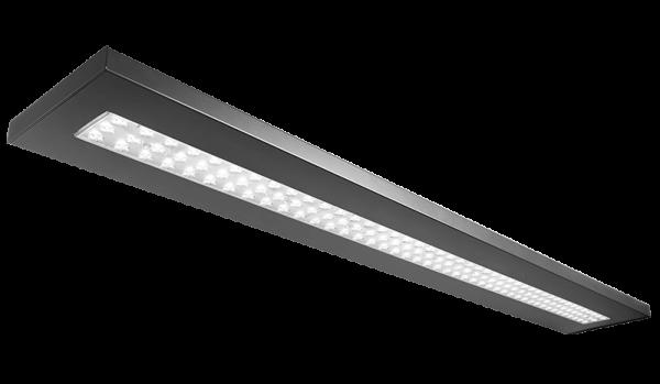 LEVEL25 II LED 4K D AM